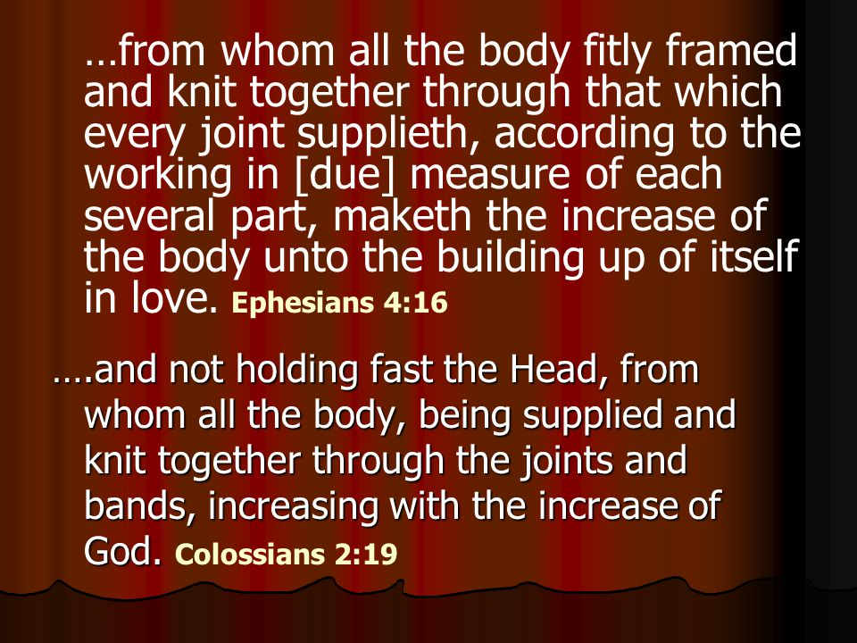 …from whom all the body fitly framed and knit together through that which every joint supplieth, according to the working in [due] measure of each several part, maketh the increase of the body unto the building up of itself in love.