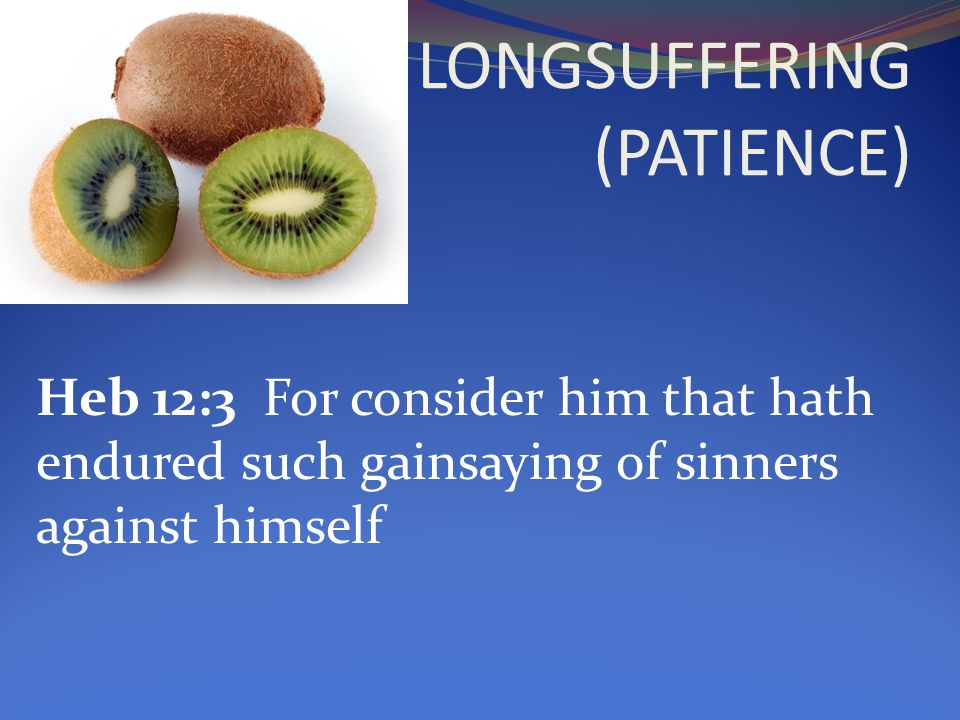 Heb 12:3 For consider him that hath endured such gainsaying of sinners against himself
