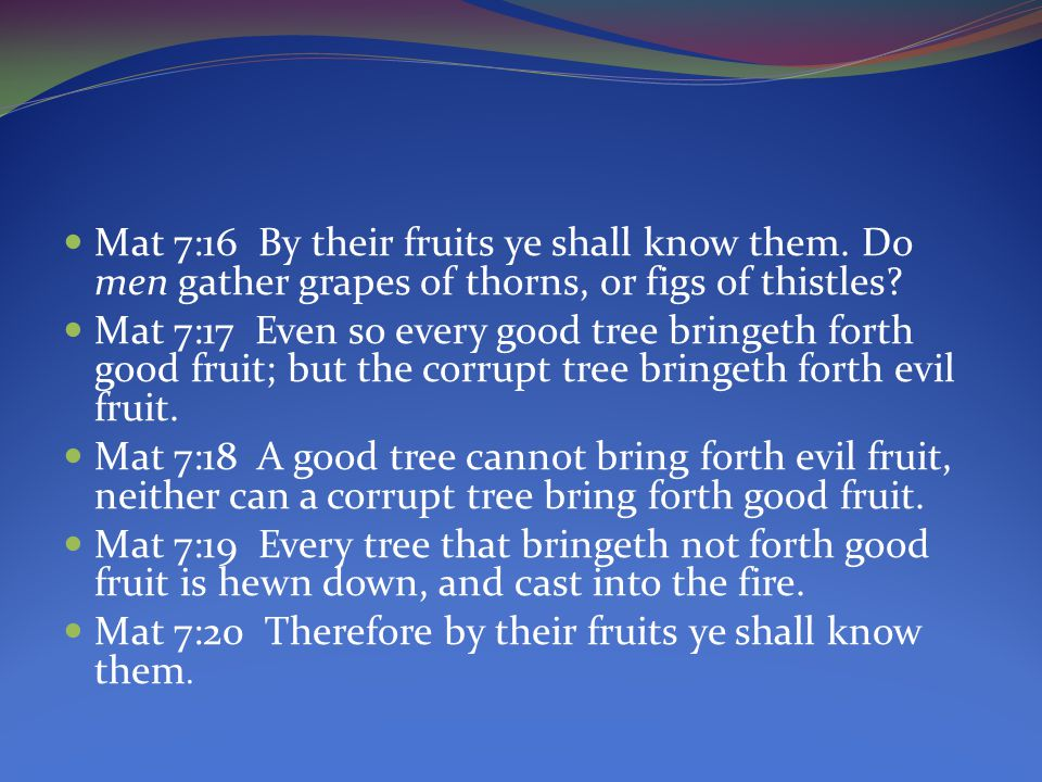 Mat 7:16 By their fruits ye shall know them. Do men gather grapes of thorns, or figs of thistles.
