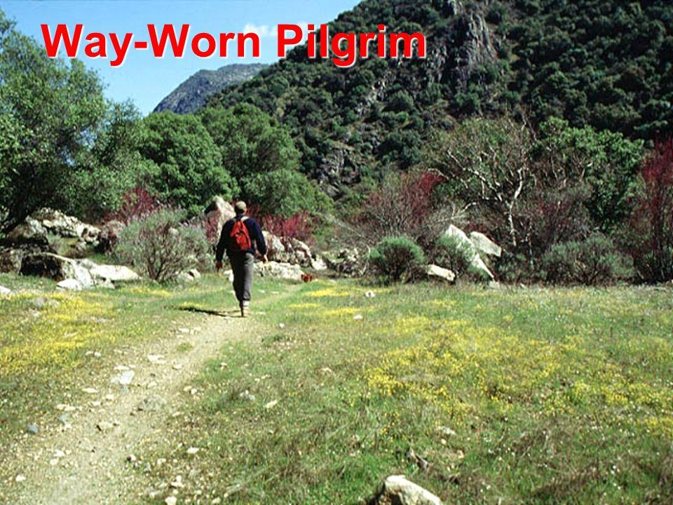 Way-Worn Pilgrim