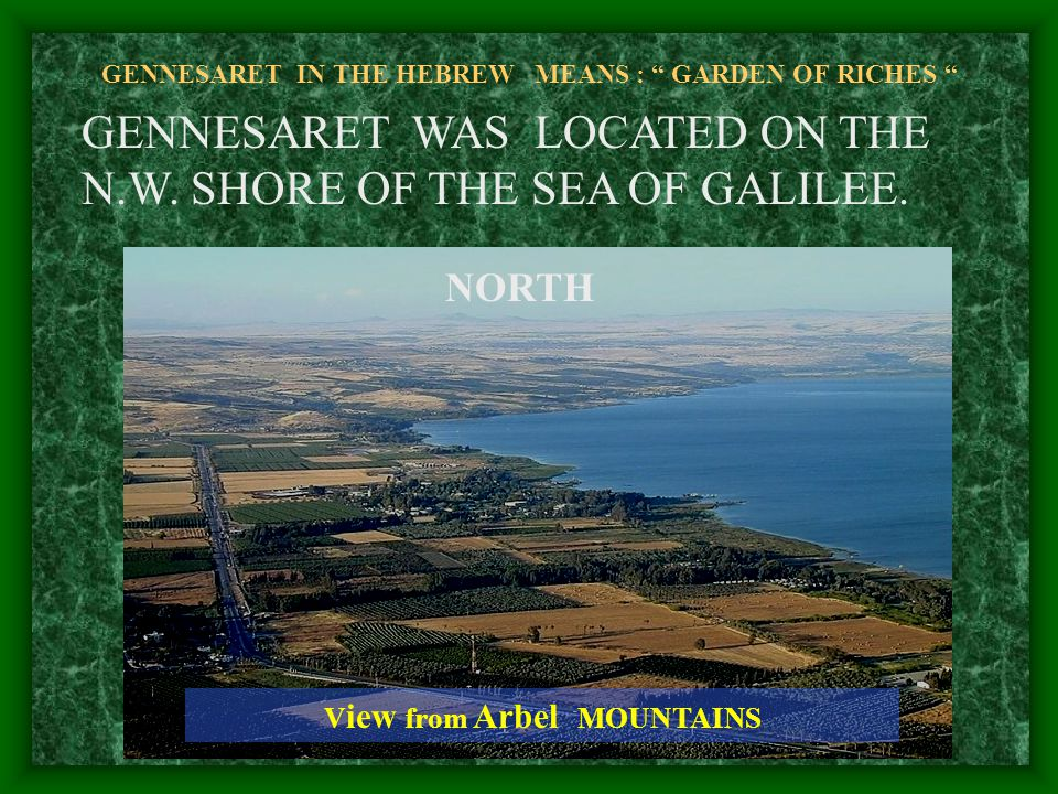 GENNESARET IN THE HEBREW MEANS : GARDEN OF RICHES GENNESARET WAS LOCATED ON THE N.W.