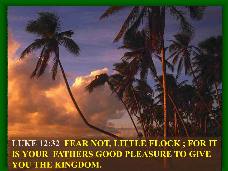 LUKE 12:32 FEAR NOT, LITTLE FLOCK ; FOR IT IS YOUR FATHERS GOOD PLEASURE TO GIVE YOU THE KINGDOM.