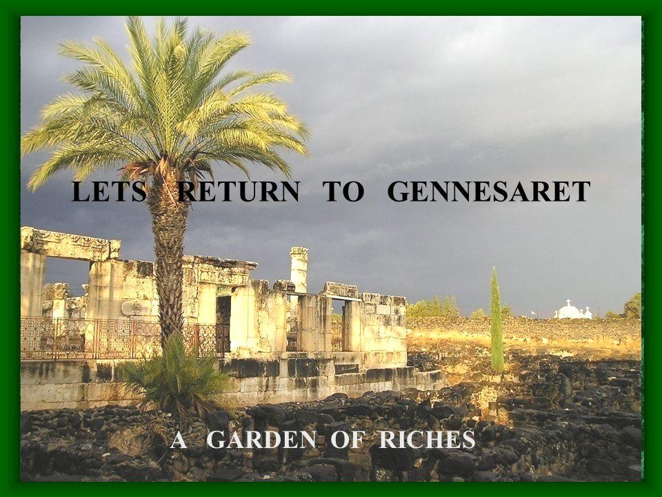 LETS RETURN TO GENNESARET A GARDEN OF RICHES