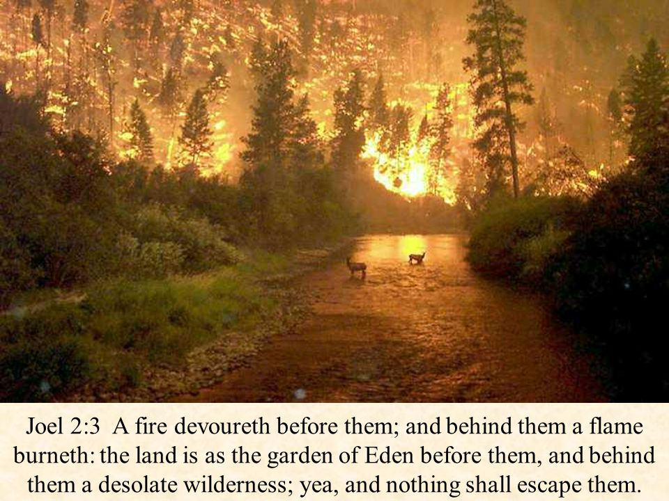 Joel 2:3 A fire devoureth before them; and behind them a flame burneth: the land is as the garden of Eden before them, and behind them a desolate wilderness; yea, and nothing shall escape them.