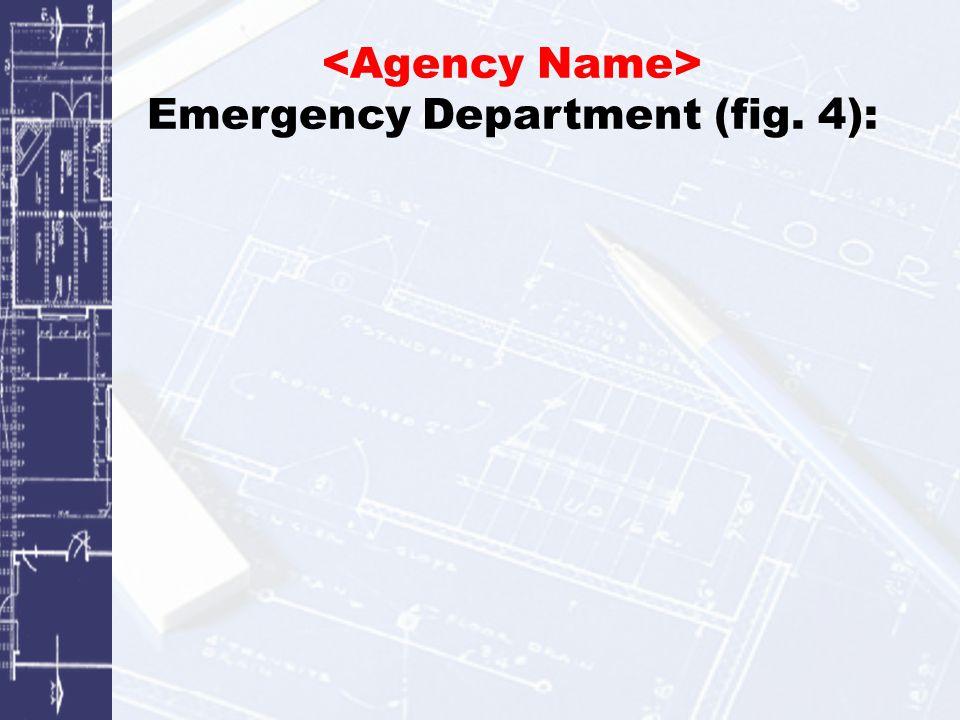 Emergency Department (fig. 4):