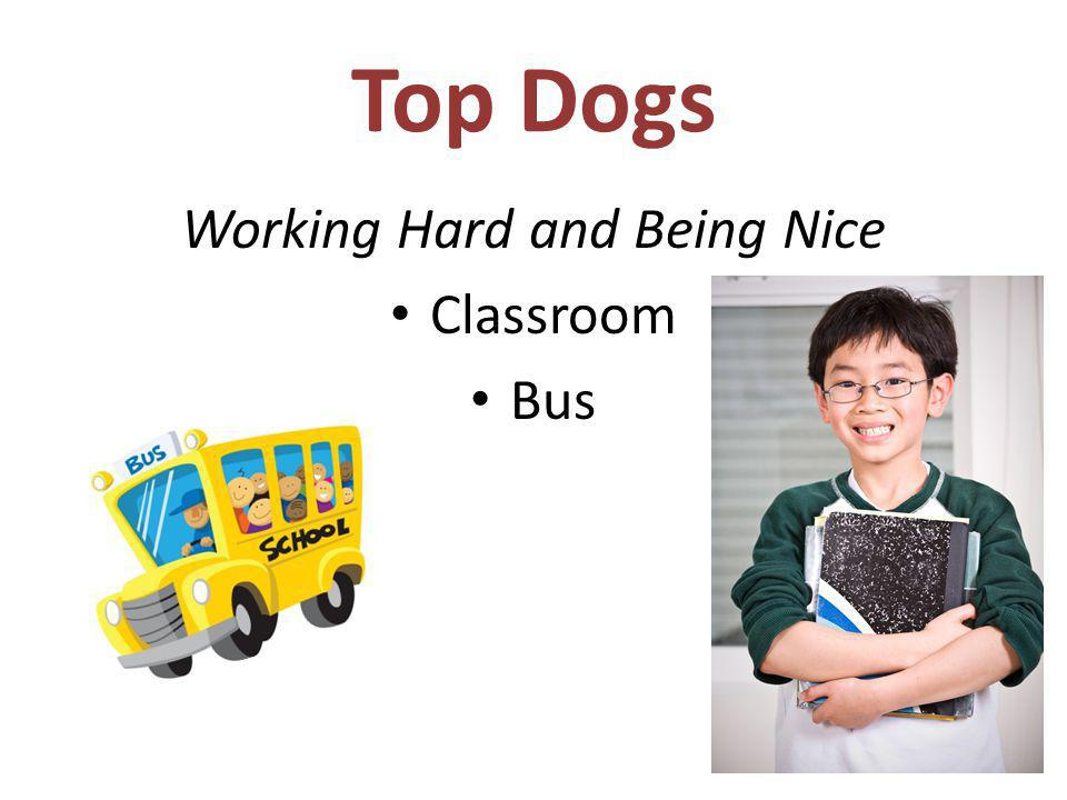 Top Dogs Working Hard and Being Nice Classroom Bus
