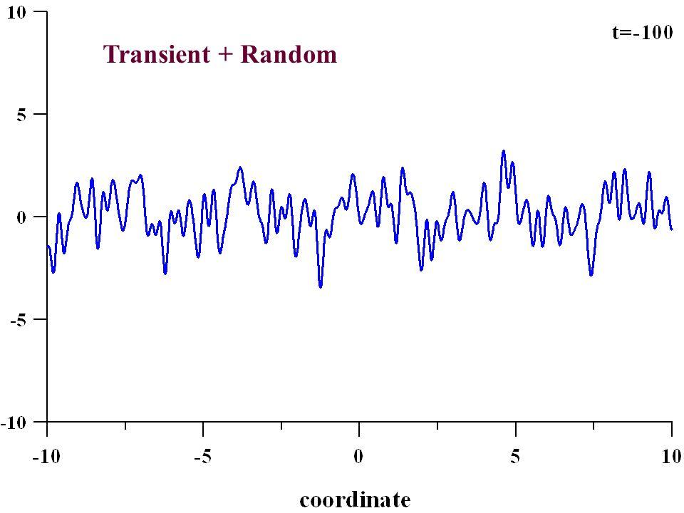 Transient + Random