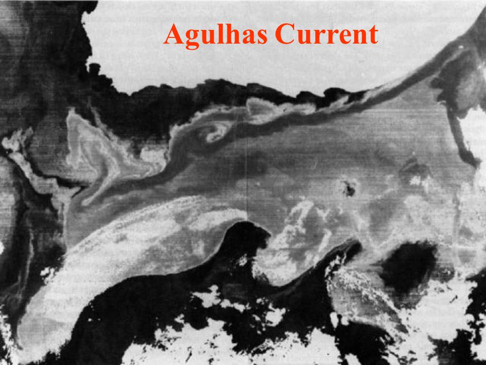 Agulhas Current