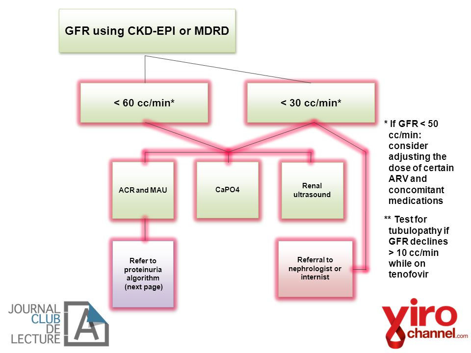 GFR using CKD-EPI or MDRD ACR and MAU Refer to proteinuria algorithm (next page) Refer to proteinuria algorithm (next page) Referral to nephrologist o