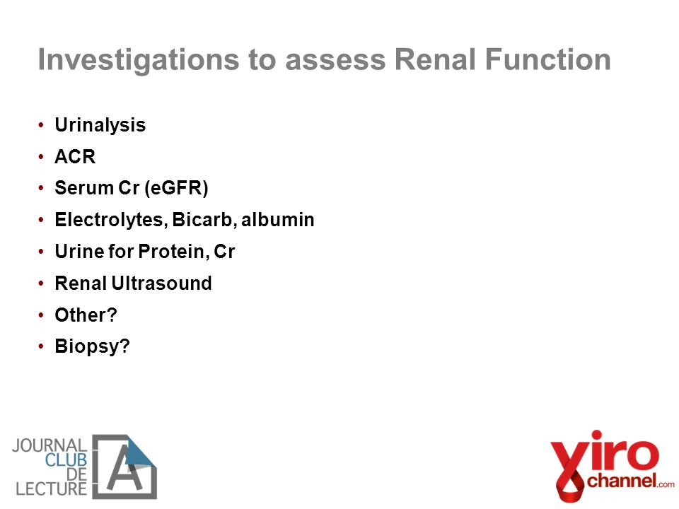 Urinalysis ACR Serum Cr (eGFR) Electrolytes, Bicarb, albumin Urine for Protein, Cr Renal Ultrasound Other? Biopsy? Investigations to assess Renal Func
