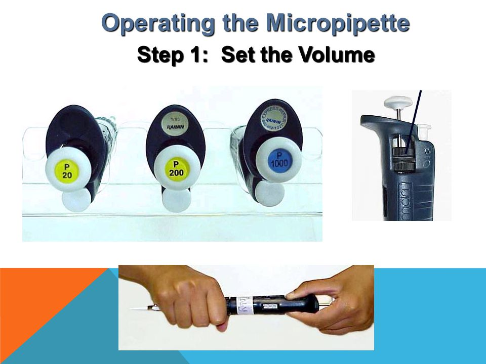 Example of tip sizes: Attaching the disposable tip Operating the Micropipette Step 2: Attach the Disposable Tip