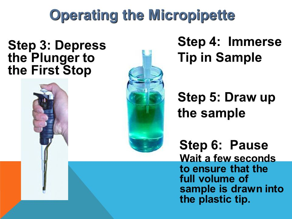 Operating the Micropipette Step 3: Depress the Plunger to the First Stop Step 5: Draw up the sample Step 6: Pause Wait a few seconds to ensure that th