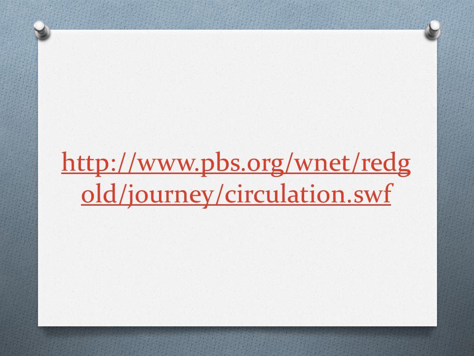 http://www.pbs.org/wnet/redg old/journey/circulation.swf