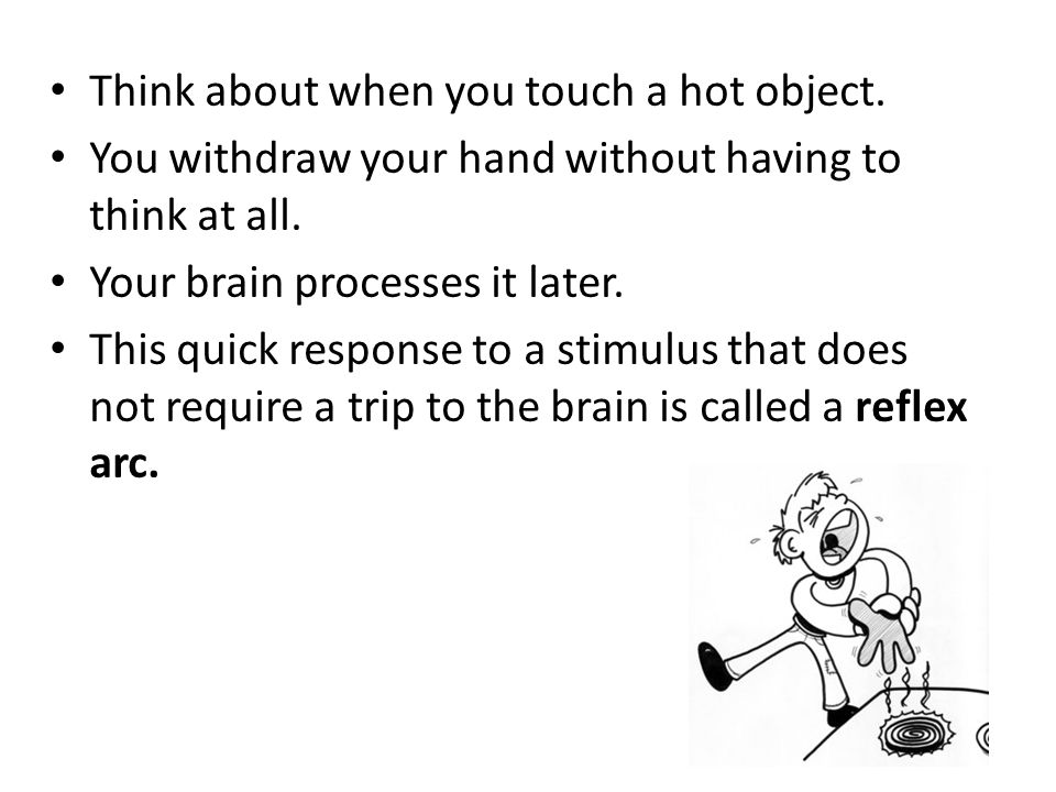Think about when you touch a hot object.You withdraw your hand without having to think at all.