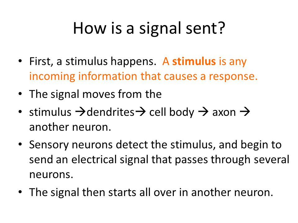 How is a signal sent.First, a stimulus happens.