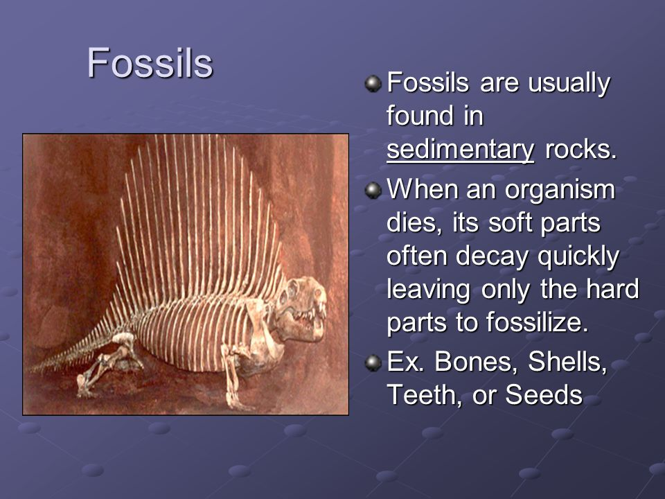 Fossils Fossils are usually found in sedimentary rocks. When an organism dies, its soft parts often decay quickly leaving only the hard parts to fossi