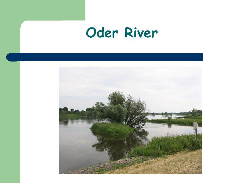Oder River