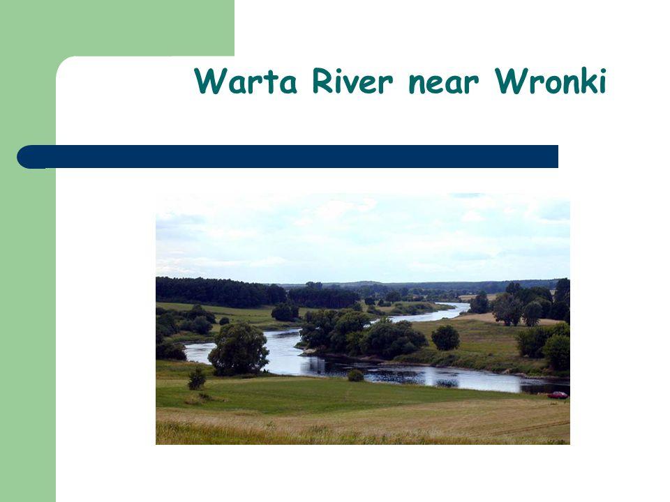 Warta River near Wronki