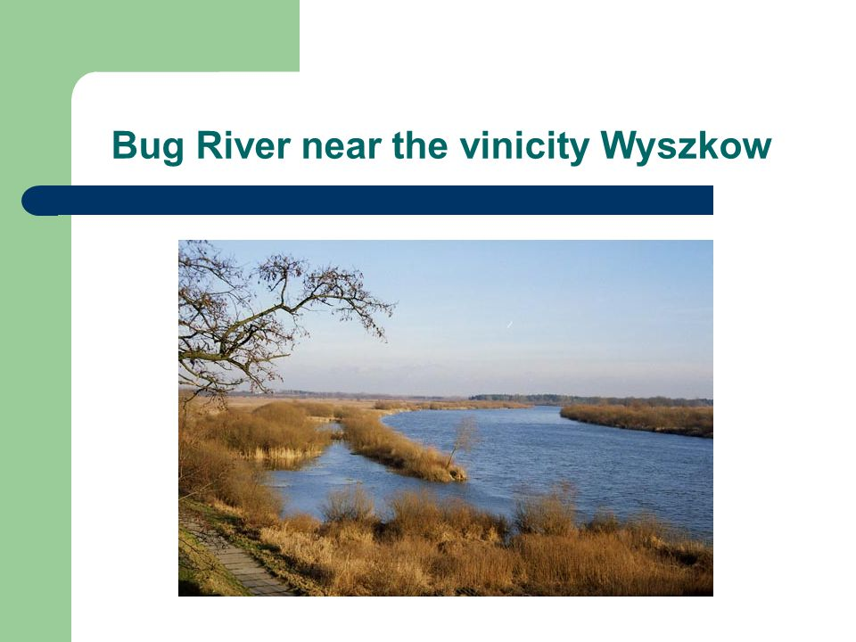 Bug River near the vinicity Wyszkow