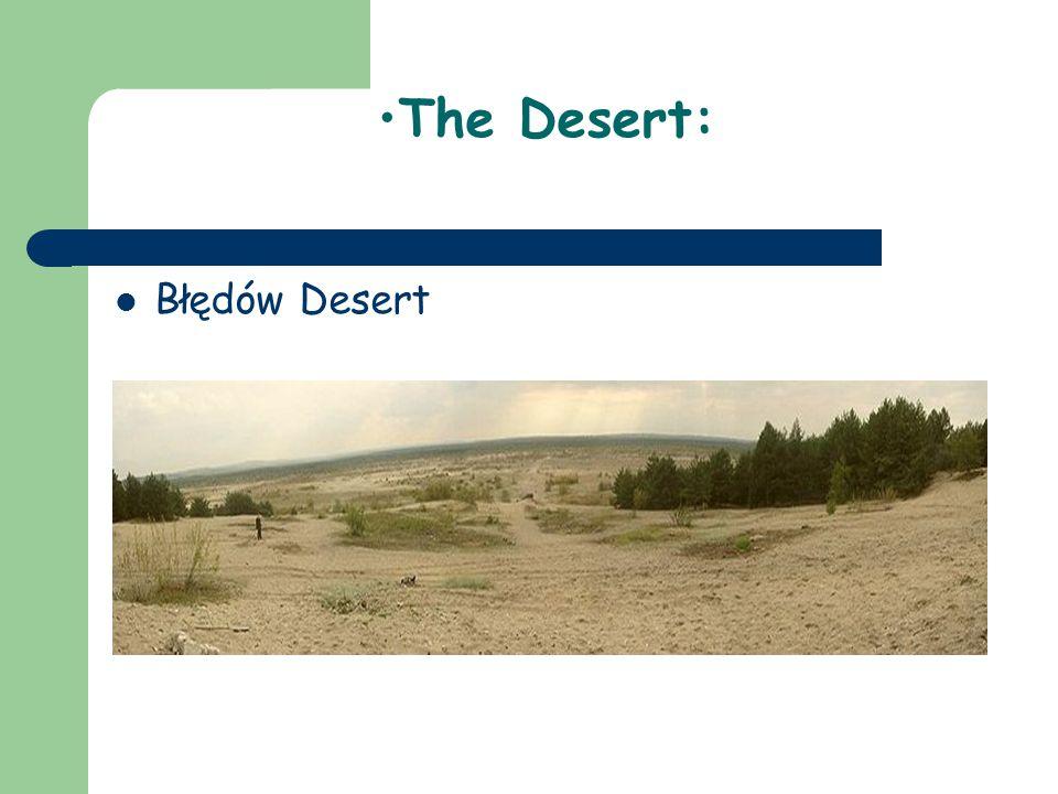 The Desert: Błędów Desert
