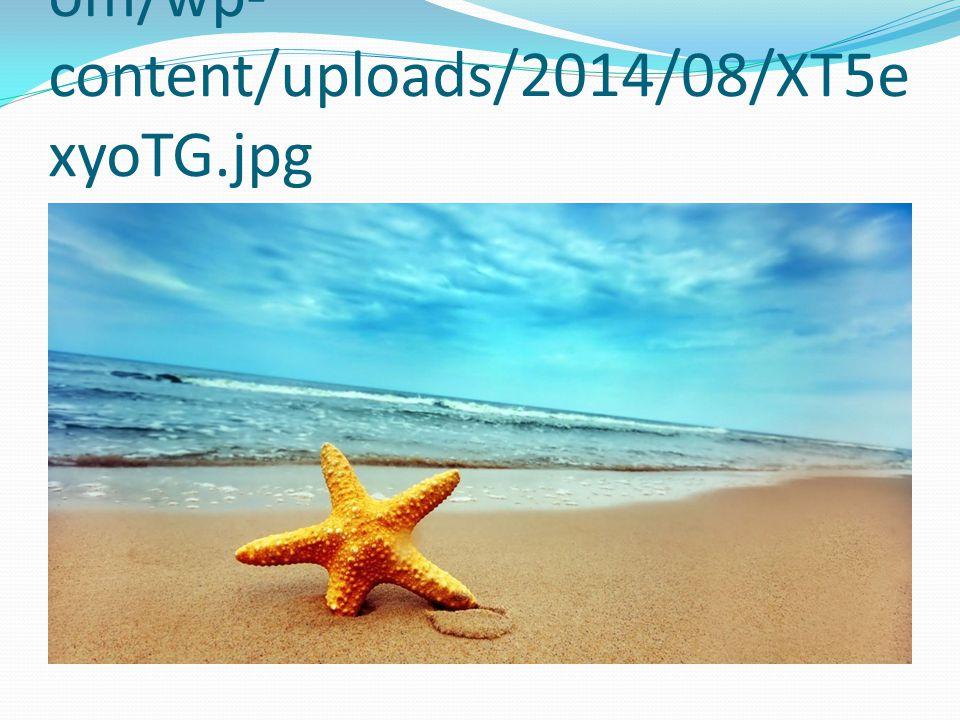 http://www.freeartwallpapers.c om/wp- content/uploads/2014/08/XT5e xyoTG.jpg