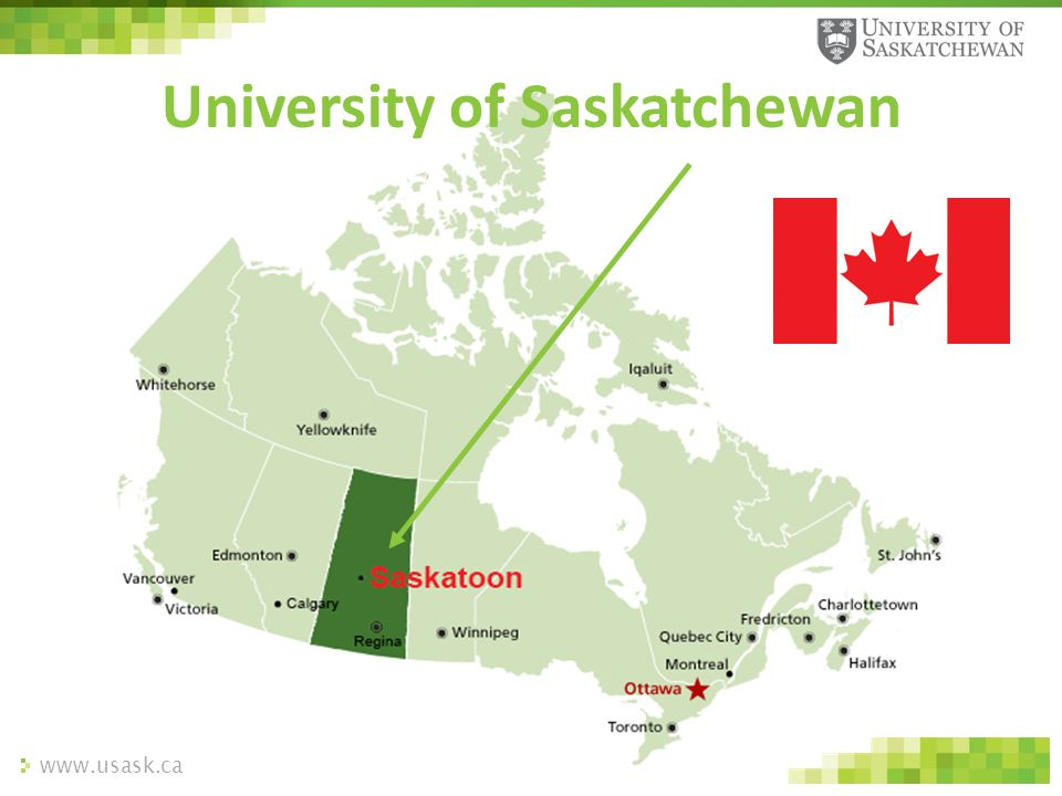 www.usask.ca University of Saskatchewan