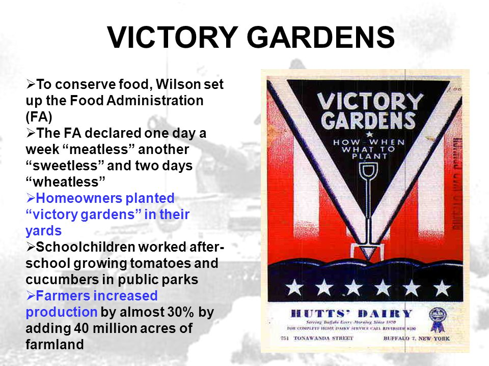 """VICTORY GARDENS  To conserve food, Wilson set up the Food Administration (FA)  The FA declared one day a week """"meatless"""" another """"sweetless"""" and two"""