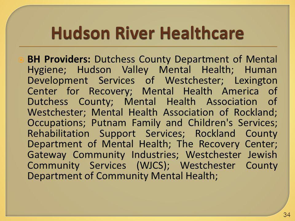 BH Providers: Dutchess County Department of Mental Hygiene; Hudson Valley Mental Health; Human Development Services of Westchester; Lexington Center