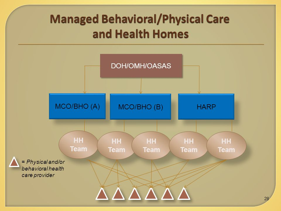 = Physical and/or behavioral health care provider MCO/BHO (A) MCO/BHO (B)HARP HH Team DOH/OMH/OASAS HH Team 28