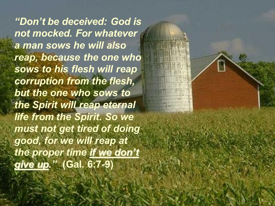 if we don't give up Don't be deceived: God is not mocked.