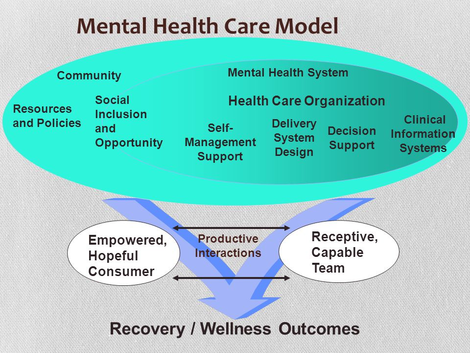 Empowered, Hopeful Consumer Productive Interactions Receptive, Capable Team Recovery / Wellness Outcomes Delivery System Design Decision Support Clini