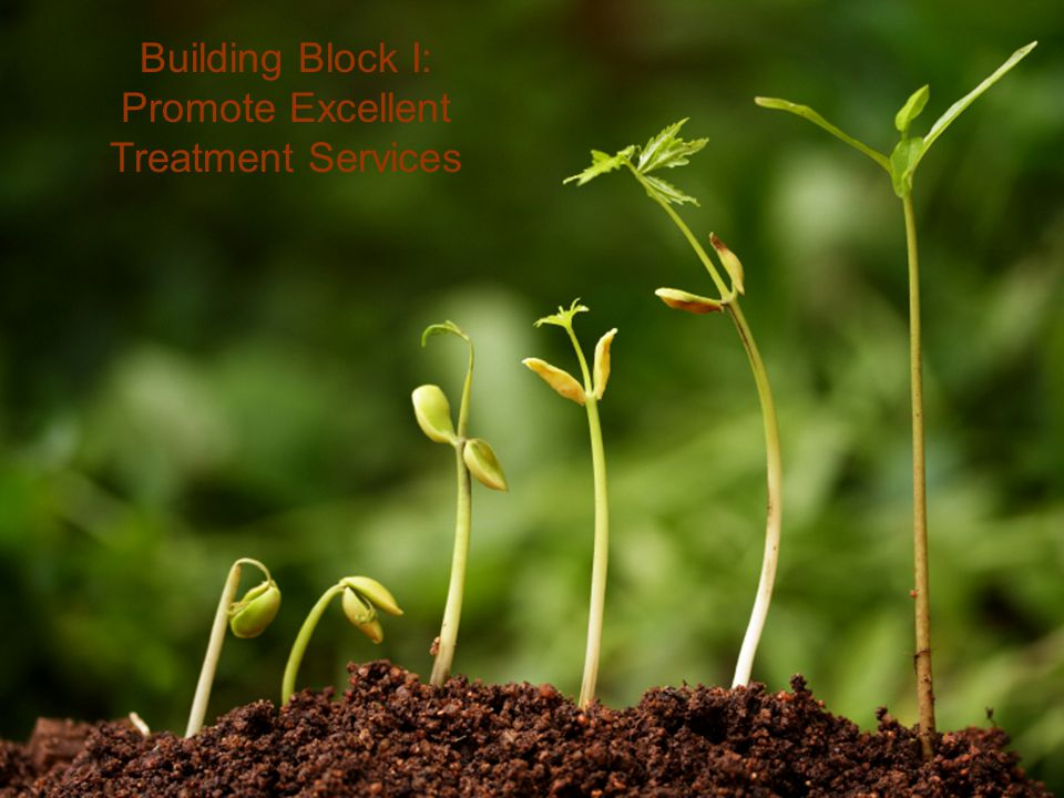 Building Block I: Promote Excellent Treatment Services