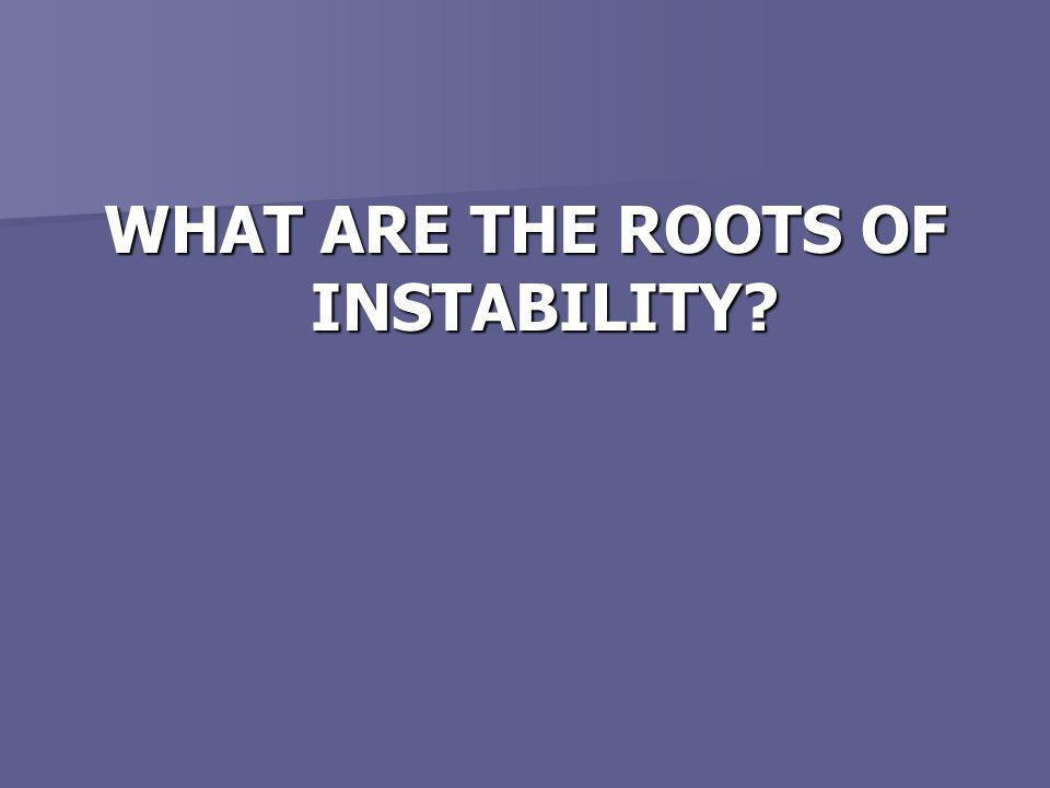 WHAT ARE THE ROOTS OF INSTABILITY?