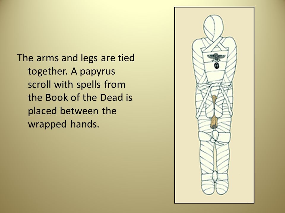 The arms and legs are tied together. A papyrus scroll with spells from the Book of the Dead is placed between the wrapped hands.
