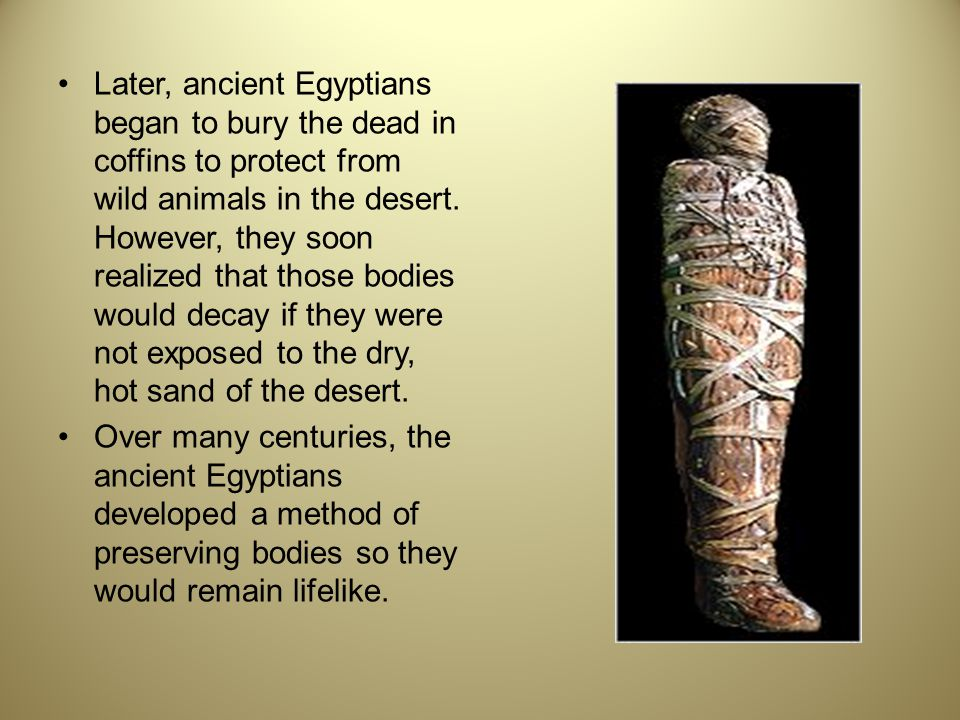 Later, ancient Egyptians began to bury the dead in coffins to protect from wild animals in the desert. However, they soon realized that those bodies w