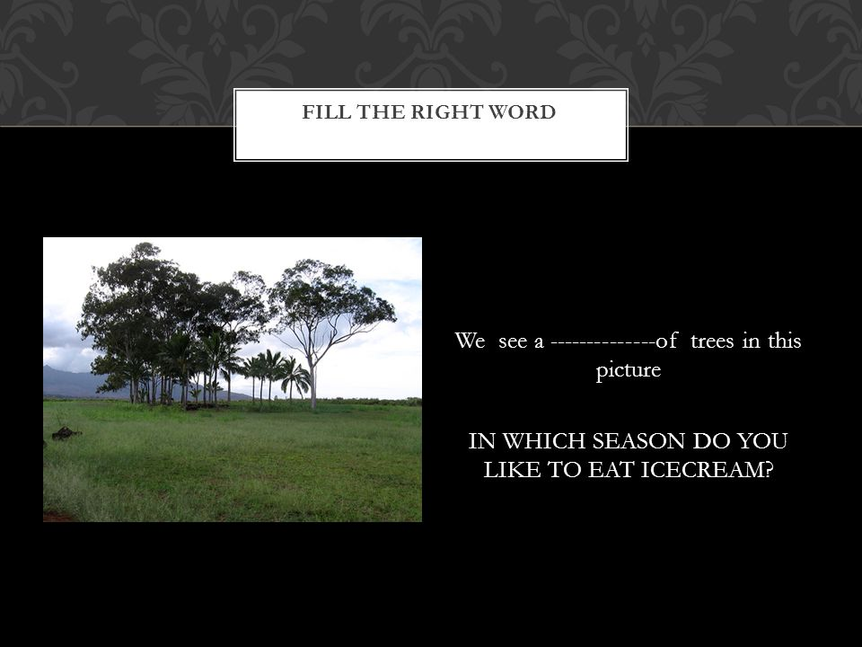 We see a --------------of trees in this picture IN WHICH SEASON DO YOU LIKE TO EAT ICECREAM? FILL THE RIGHT WORD
