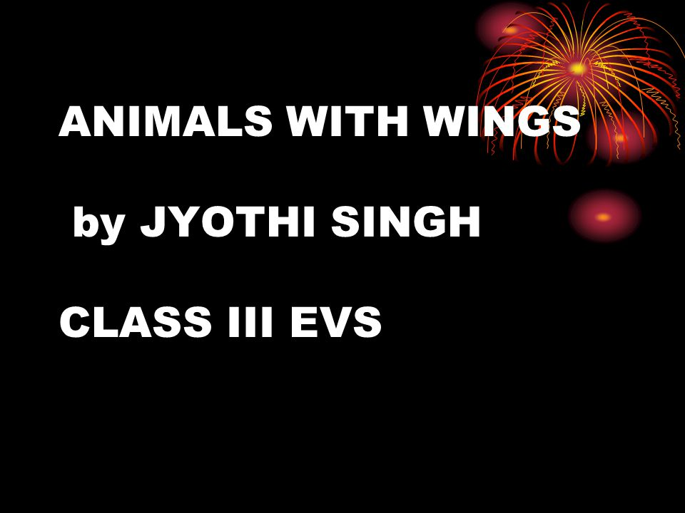 ANIMALS WITH WINGS by JYOTHI SINGH CLASS III EVS