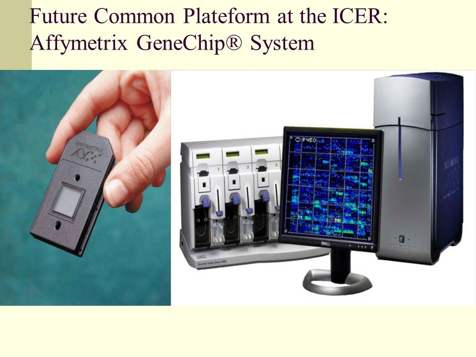 Future Common Plateform at the ICER: Affymetrix GeneChip® System