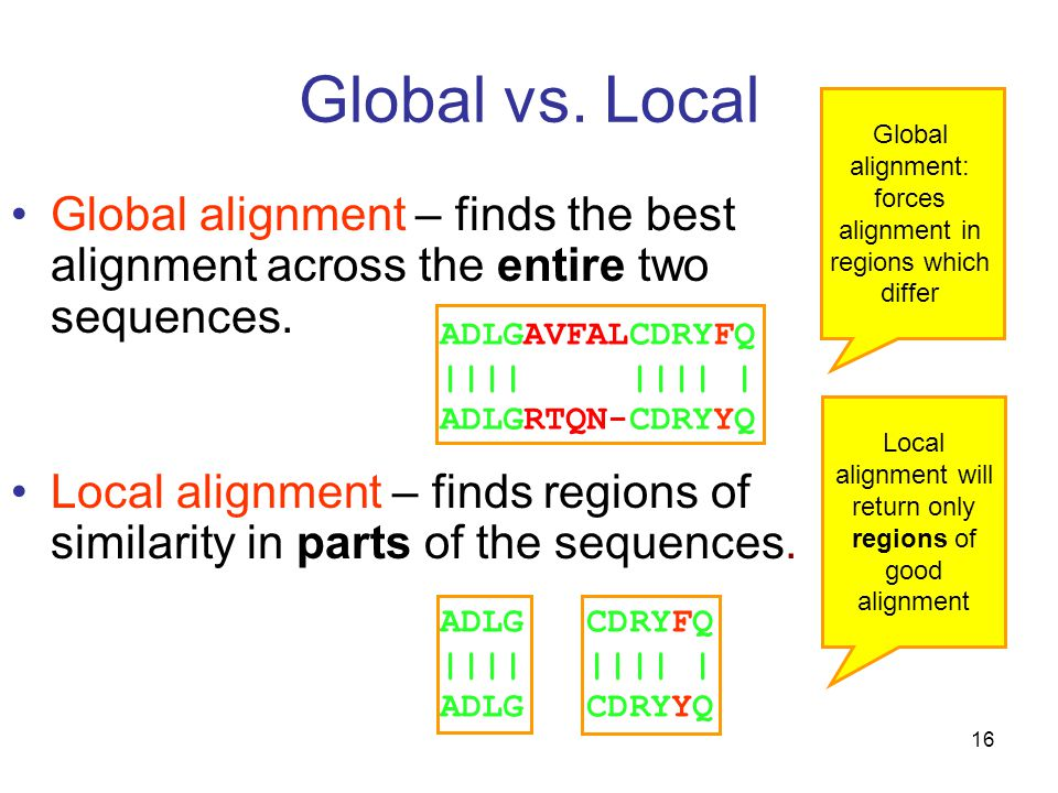 16 Global vs. Local Global alignment – finds the best alignment across the entire two sequences.