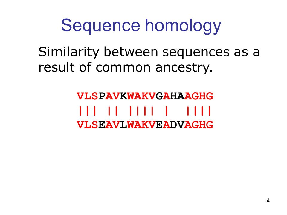 4 Sequence homology VLSPAVKWAKVGAHAAGHG ||| || |||| | |||| VLSEAVLWAKVEADVAGHG Similarity between sequences as a result of common ancestry.