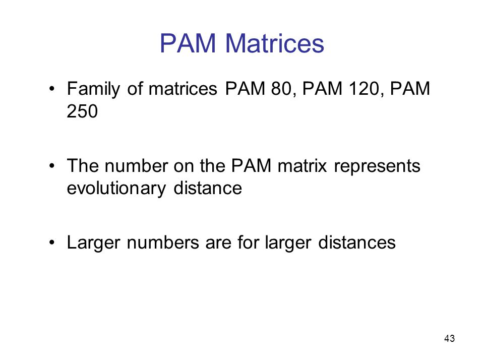 43 PAM Matrices Family of matrices PAM 80, PAM 120, PAM 250 The number on the PAM matrix represents evolutionary distance Larger numbers are for larger distances