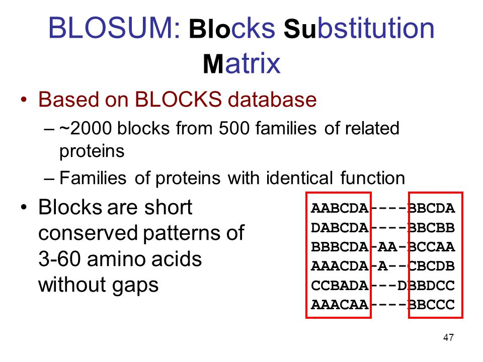 47 BLOSUM: Blo cks Su bstitution M atrix Based on BLOCKS database –~2000 blocks from 500 families of related proteins –Families of proteins with identical function Blocks are short conserved patterns of 3-60 amino acids without gaps AABCDA----BBCDA DABCDA----BBCBB BBBCDA-AA-BCCAA AAACDA-A--CBCDB CCBADA---DBBDCC AAACAA----BBCCC