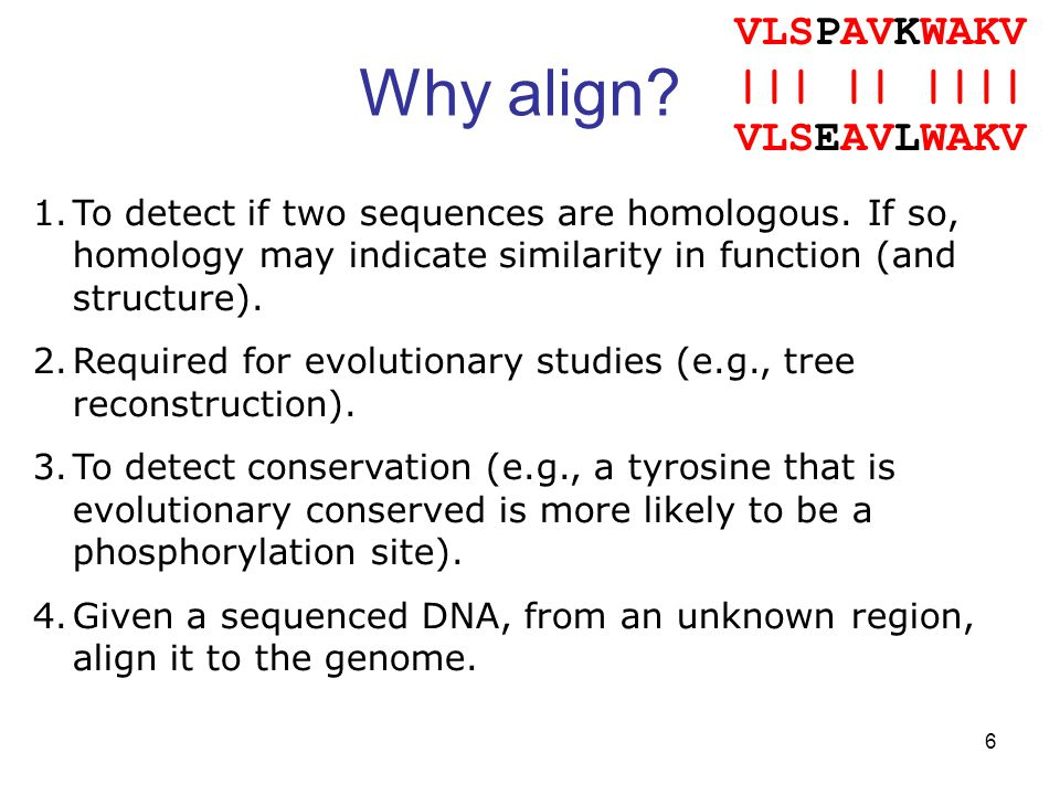 6 Why align. VLSPAVKWAKV ||| || |||| VLSEAVLWAKV 1.To detect if two sequences are homologous.