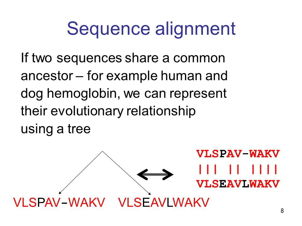 8 Sequence alignment If two sequences share a common ancestor – for example human and dog hemoglobin, we can represent their evolutionary relationship using a tree VLSPAV-WAKV ||| || |||| VLSEAVLWAKV VLSPAV - WAKV VLSEAVLWAKV