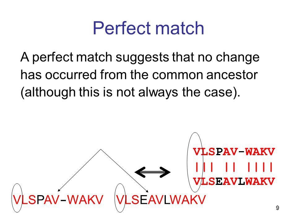 9 Perfect match VLSPAV-WAKV ||| || |||| VLSEAVLWAKV VLSPAV - WAKV VLSEAVLWAKV A perfect match suggests that no change has occurred from the common ancestor (although this is not always the case).