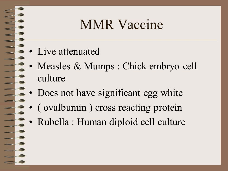Live attenuated Measles & Mumps : Chick embryo cell culture Does not have significant egg white ( ovalbumin ) cross reacting protein Rubella : Human diploid cell culture MMR Vaccine