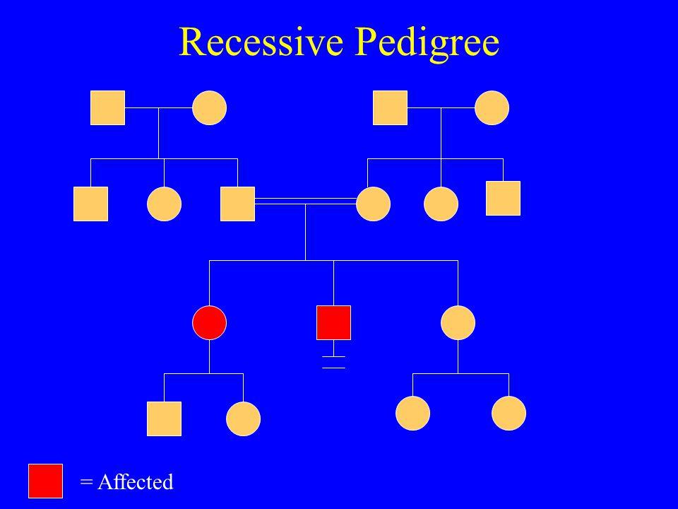 Recessive Pedigree = Affected