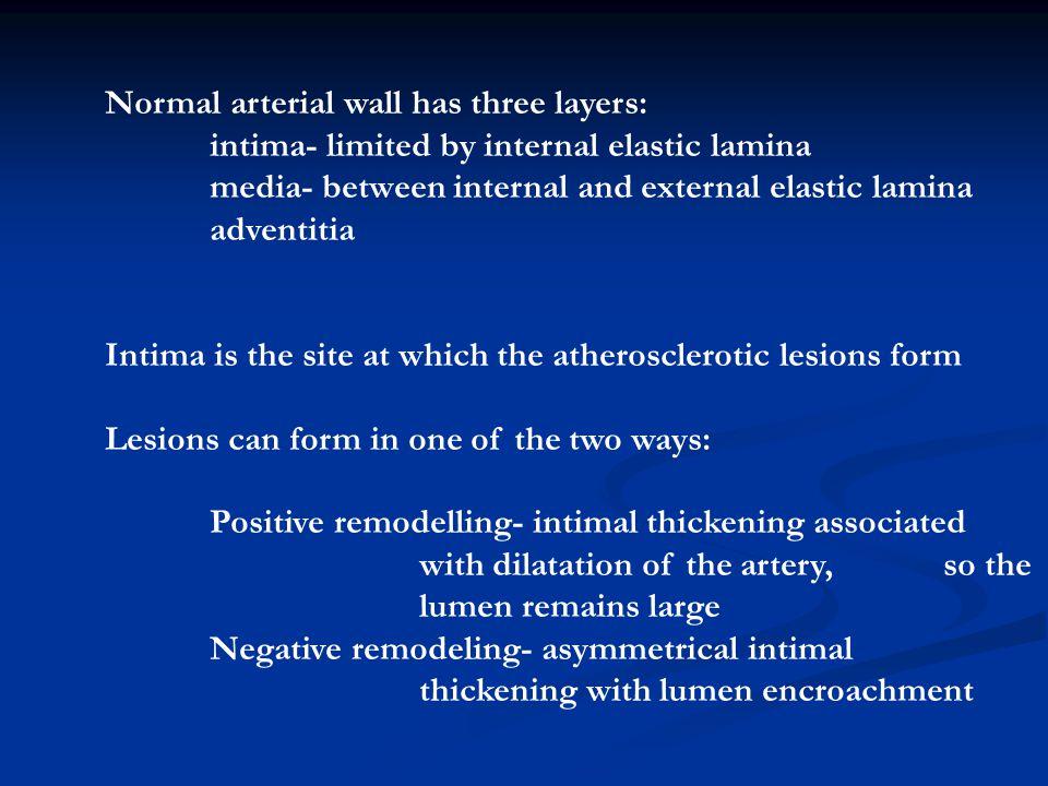 Normal arterial wall has three layers: intima- limited by internal elastic lamina media- between internal and external elastic lamina adventitia Intim
