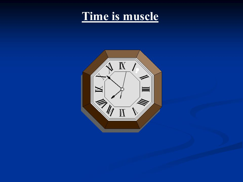 Time is muscle