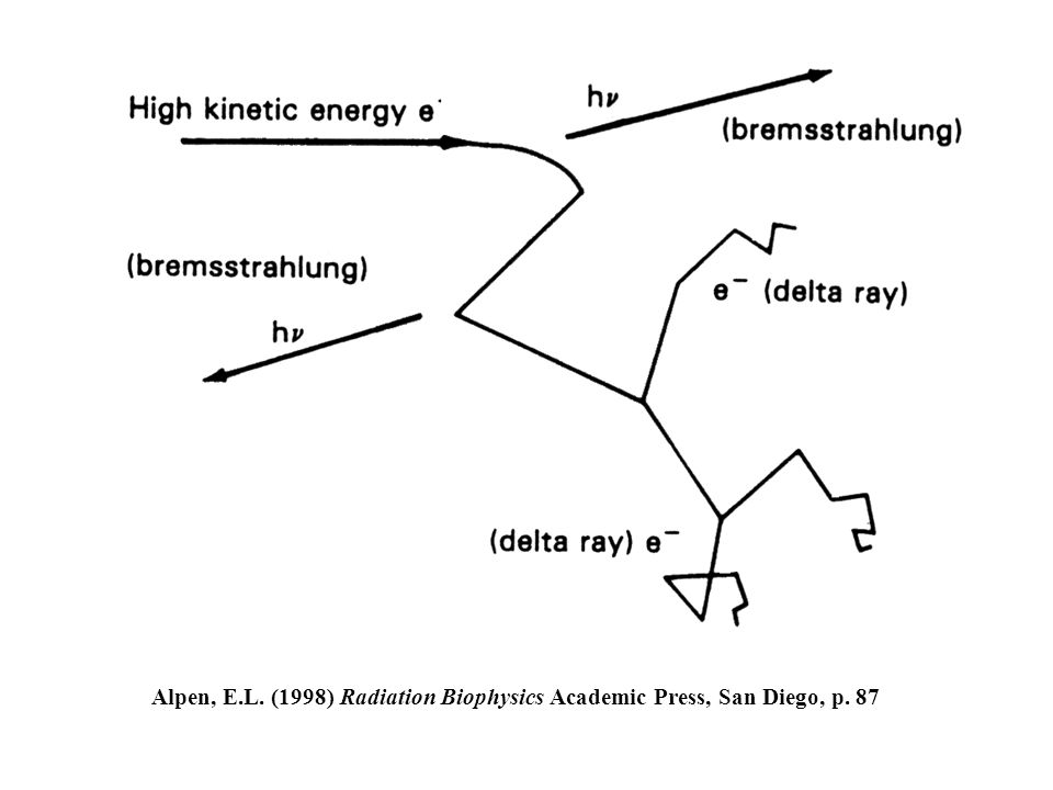 Alpen, E.L. (1998) Radiation Biophysics Academic Press, San Diego, p. 87